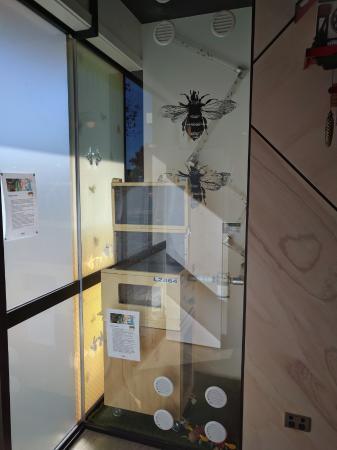 Rangiora, New Zealand: The Bee Hive