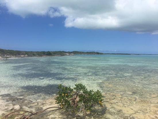 Pine Cay: photo9.jpg