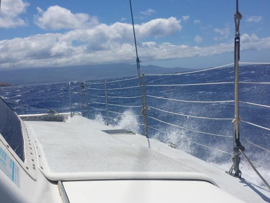 Sail Maui Private Tour: sailing was as much fun as snorkeling