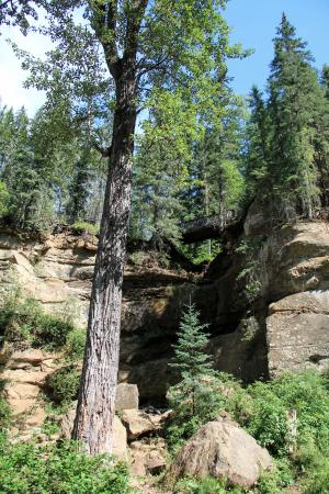 Hard Luck Canyon: Looking up to the bridge