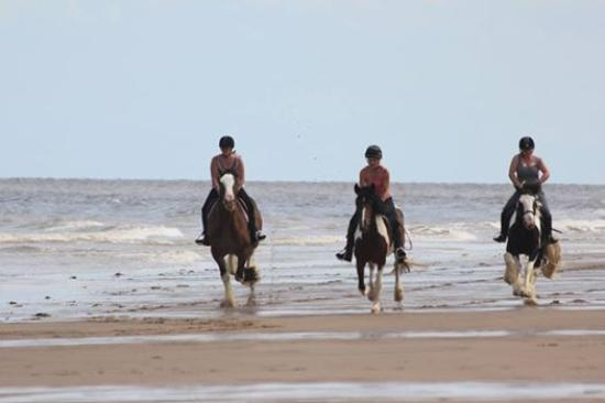 Skegness, UK: Amazing beach rides for experienced riders