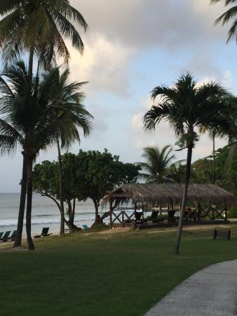 Landscape - Renaissance St. Croix Carambola Beach Resort & Spa Photo