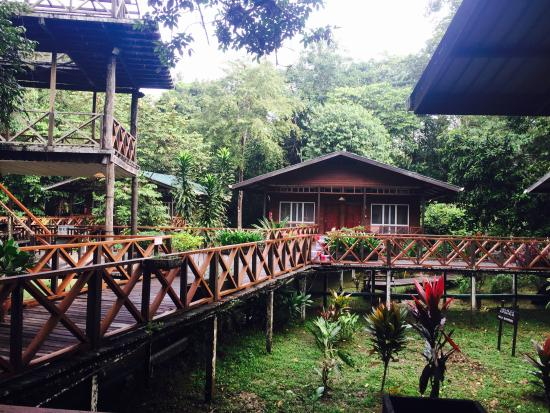 Borneo Nature Lodge: Beautiful