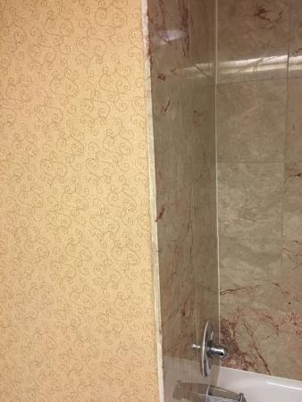 Hampton Inn & Suites Hershey: photo0.jpg