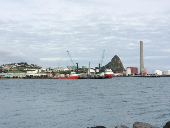 New Plymouth, Nueva Zelanda: Taken from our breakwater wall of the port