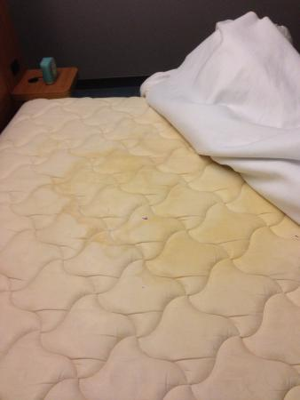 aloft Plano: Another Mattress stain.