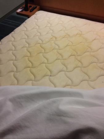aloft Plano : And another mattress stain.