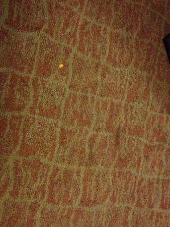 Sleep Inn & Suites Upper Marlboro near Andrews AFB: one of several stains in the carpet