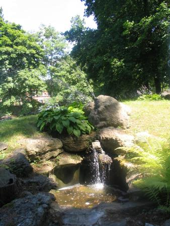 Sonnenberg Gardens & Mansion State Historic Park: A water feature near the Rock Gardens