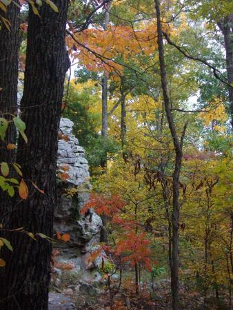 Harrisburg, Илинойс: lower part of the Garden of the Gods, beautiful colors
