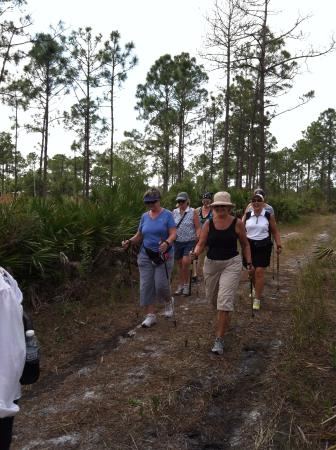 North Fort Myers, FL: Wear your hiking boots or old shoes, there will be dust/mud!