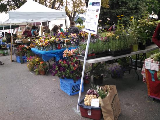 Hamilton Farmers Market Co-op
