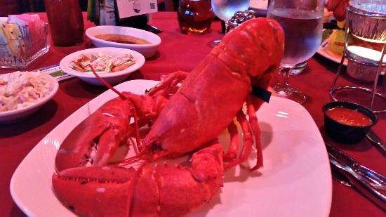 Grasonville, MD: Monday lobster dinner special.   Very tasty.  Great meal and excellent service