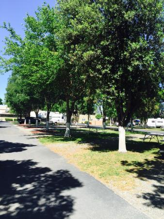 Heritage RV Park: RV Sites