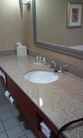 Holiday Inn Hotel & Suites Cincinnati-Eastgate-bild