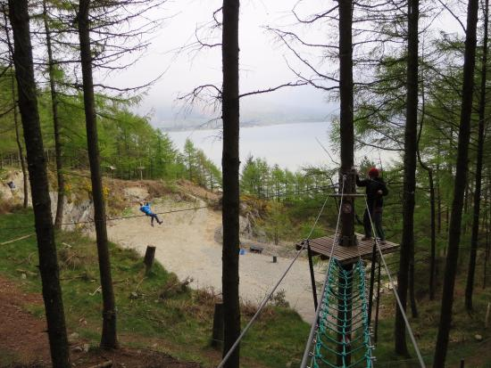 Carlingford Adventure Centre : There were so many zips and at the end there were great views.