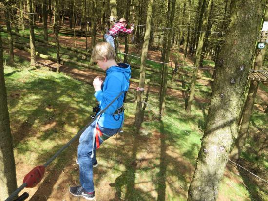 Carlingford Adventure Centre : My son tried to do all the high ropes activities with no hands!
