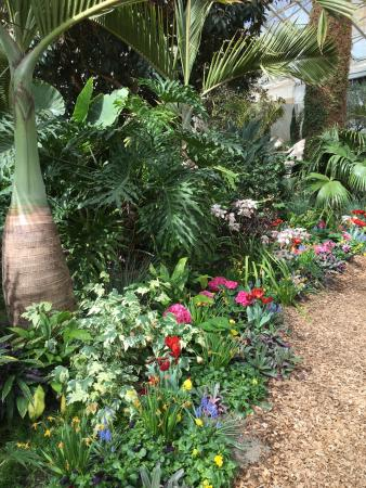 Foellinger Freimann Botanical Conservatory: This Was The First Garden We  Came To. We