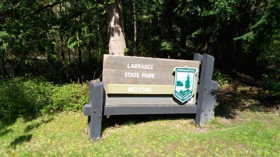 Bellingham, Вашингтон: Larrabee State Park