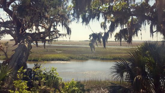 Greyfield Inn: Marshes near the Cemetery