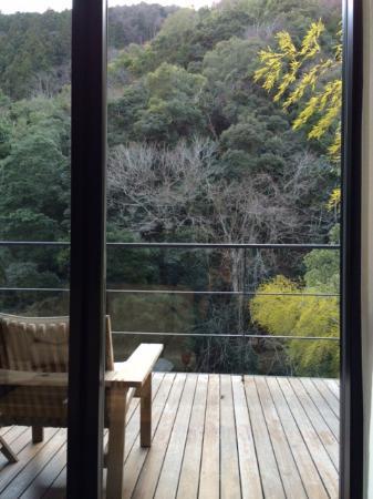 Arcana Izu: 紅葉はしないが、冬枯れも美しい山。