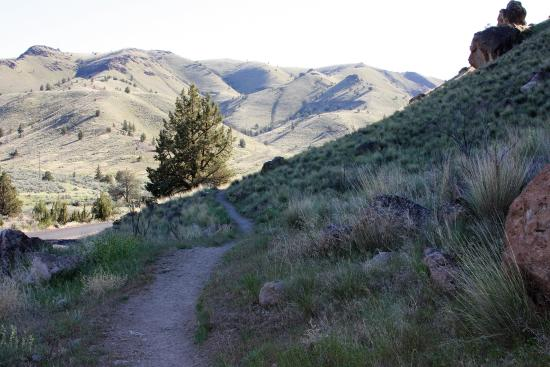 John Day Fossil Beds National Monument- Sheep Rock: The start of the main trail.  All three options break off from this one.