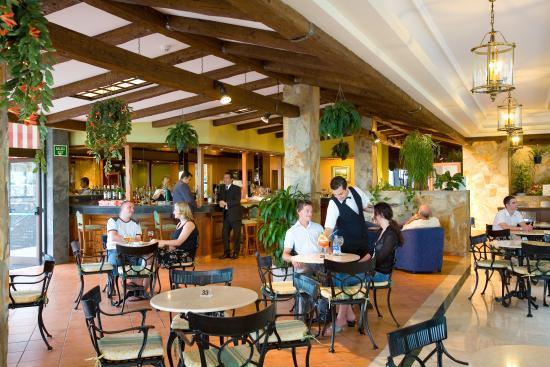 Hotel diamante suites 61 7 1 updated 2018 prices reviews tenerife puerto de la cruz - Diamante suites puerto de la cruz tenerife ...