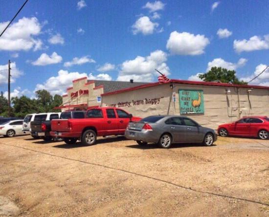 Navasota, TX: Dizzy Llama