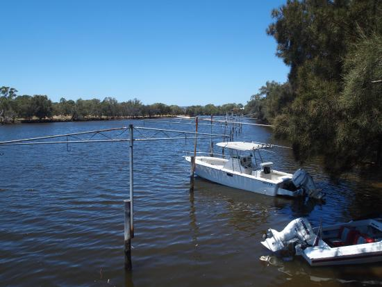 Ascot, Australia: Right by the river