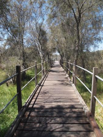 Ascot, Australia: Over the footbridge