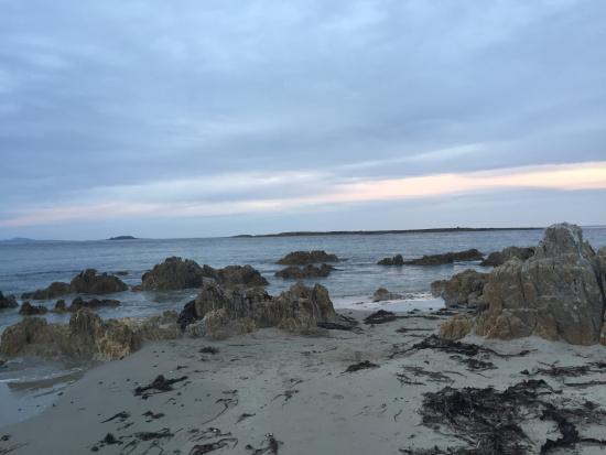 Smithton, Australia: Our first wild devil and sunset at Woolnorth Point