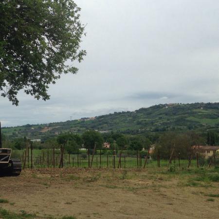 Monte Colombo, Italia: photo4.jpg