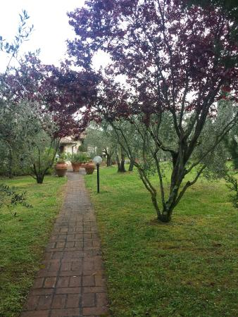 Pozzuolo, Italia: 20160425_095319_large.jpg