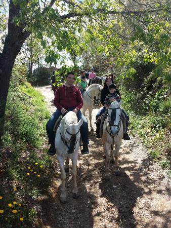 Foto realizada en mitad de la ruta en medio de la naturaleza en camino de Galaroza.