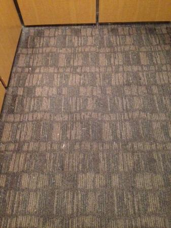 Red Lion Hotel Pasco: elevator stunk so bad and was filthy