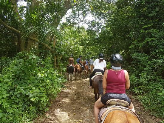 Grande-Terre Island, Guadeloupe : 20160424_122249_large.jpg