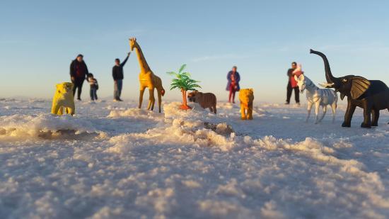 Photo of Hostelling International Salar de Uyuni