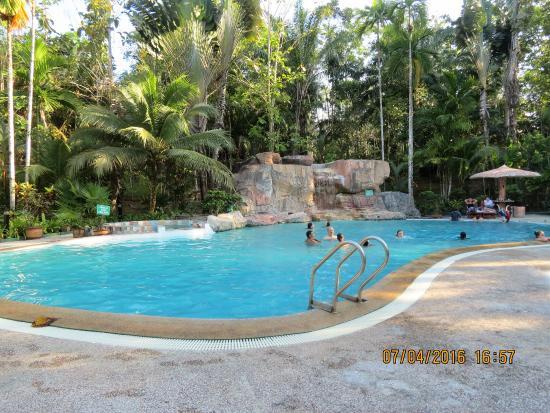 Sepilok Jungle Resort: lovely pool