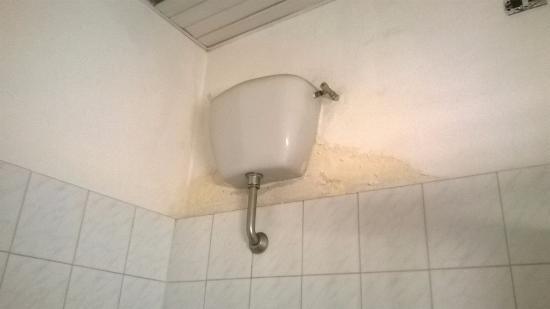 Muffa nel muro - Muffa in casa nuova ...