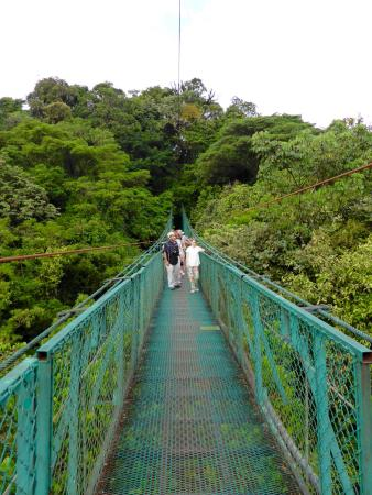 Up in the Cloud Forest : Sky Walks
