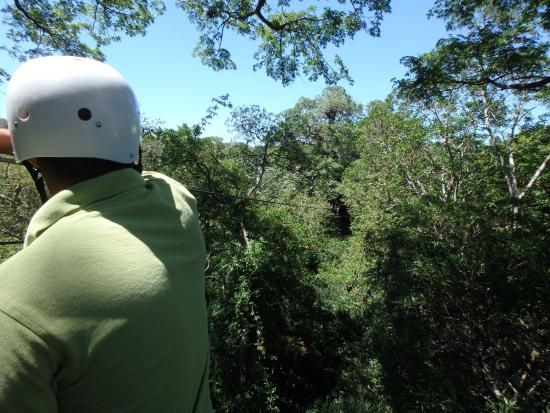 Up in the Cloud Forest : Zip Lines