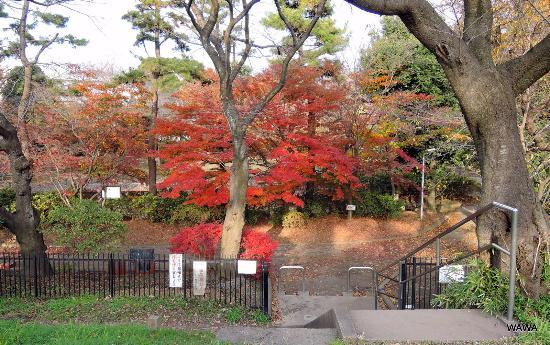 Maehara Park