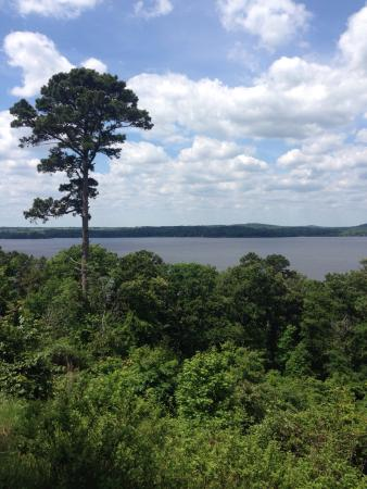 Avinger, TX: This mountain has the most beautiful view on Lake O' the Pines! So happy I could be here😄