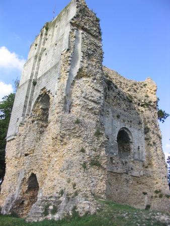 Vieux Donjon照片