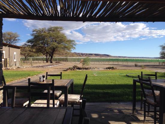 Regionen Khomas, Namibia: Joli lodge, vin du coin, guépards