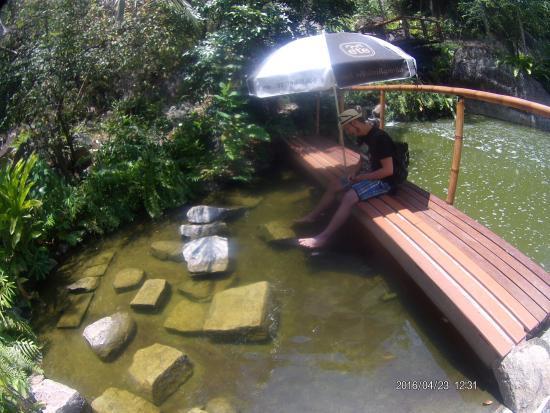 Maret, Tajlandia: Eine kleine grüne Oase 😄
