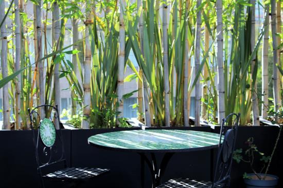 Suites Hipolito Taine : terraza