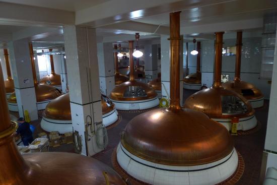 Golden, CO: Mashing, lautering, boiling copper kettles