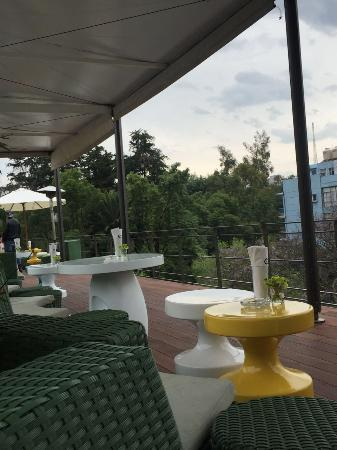 Condesa DF: terraza