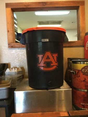 Foto de Auburn